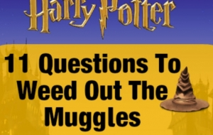 Every Potter Head Should Know The Answers To These Questions