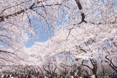 11 Things to do in Ueno, Tokyo